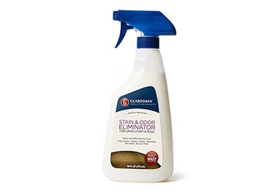 Guardsman Stain & Odor Eliminator
