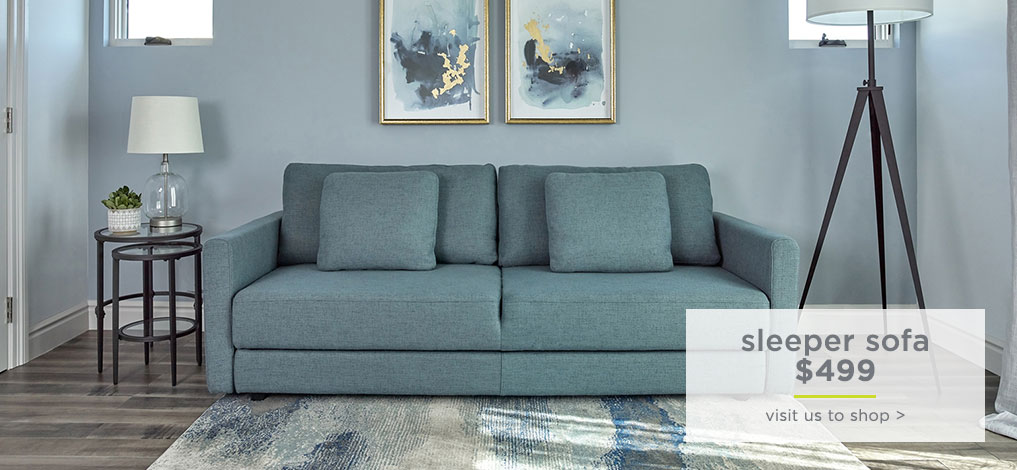Sleeper Sofa $499